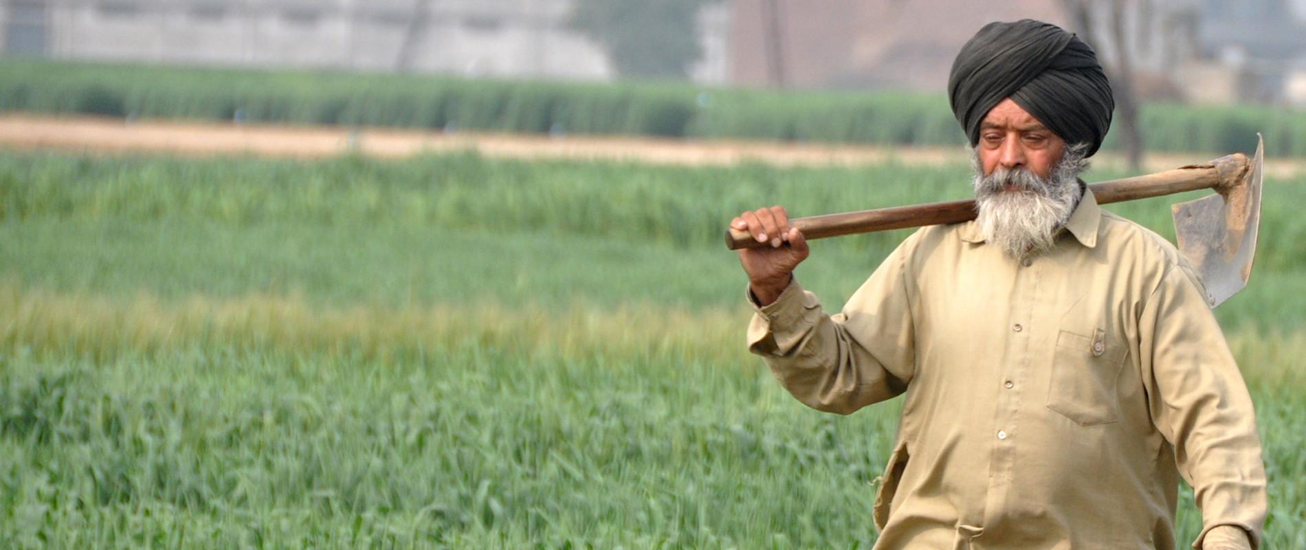 Les défis de l'agriculture indienne face au changement climatique